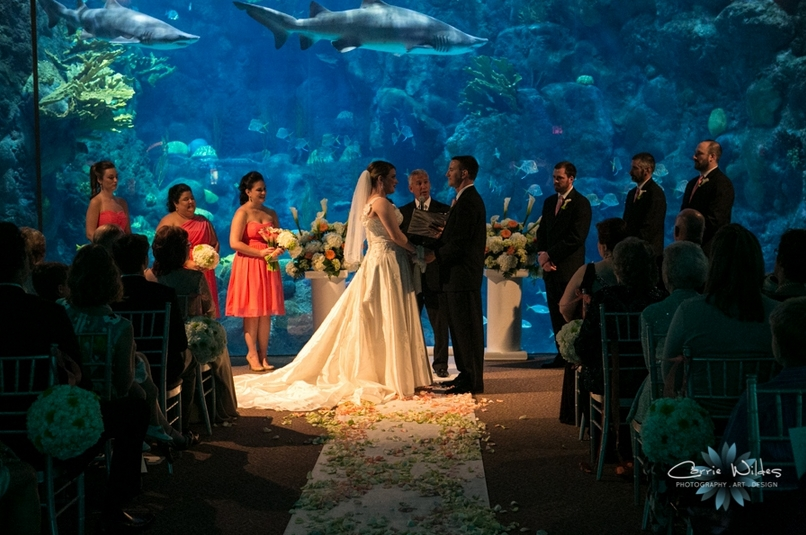 the best wedding reception ideas